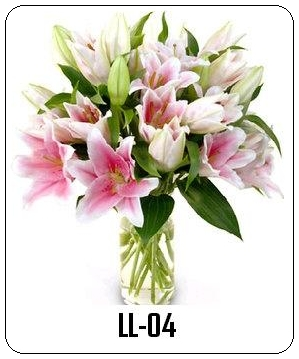 LL04 Jual Bunga Ke Ancol Jakarta