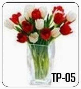 TV01-1-272x300 Bunga Meja Tulip