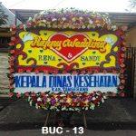 BUC-02-150x150 Bunga Papan Congratulation